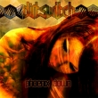 Dirtswitch - Phoenix Down