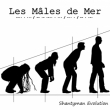 Les Males de Mer - Shantyman Evolution