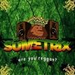 Suemetrix - Are You Reggae